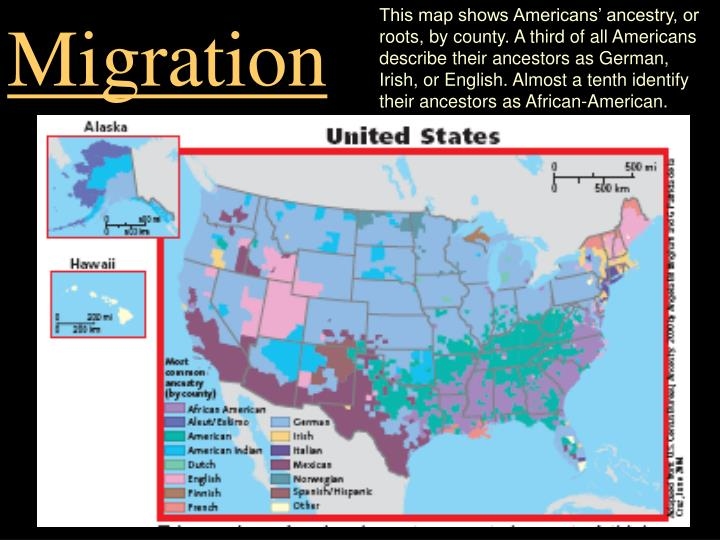 african american immigration essay A fundamental difference between african americans and african immigrants is the way they react to racism and discrimination african americans usually see racism as the main cause of poverty among their people.