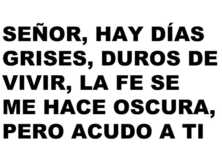 SEÑOR, HAY DÍAS GRISES, DUROS DE VIVIR,