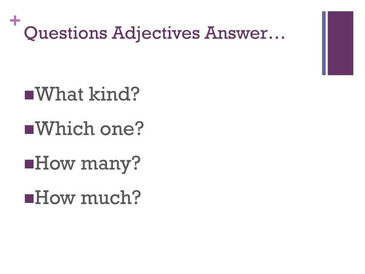 Questions adjectives answer