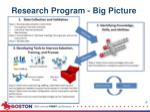 research program big picture