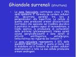 ghiandole surrenali struttura1