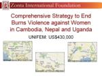 comprehensive strategy to end burns violence against women in cambodia nepal and uganda