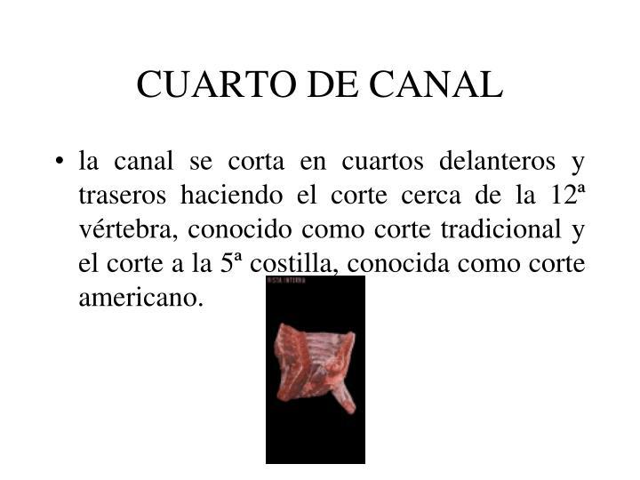 CUARTO DE CANAL