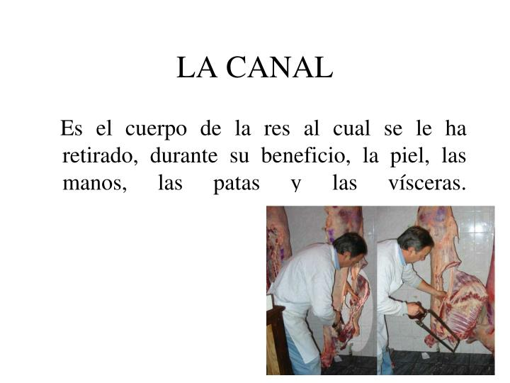 LA CANAL