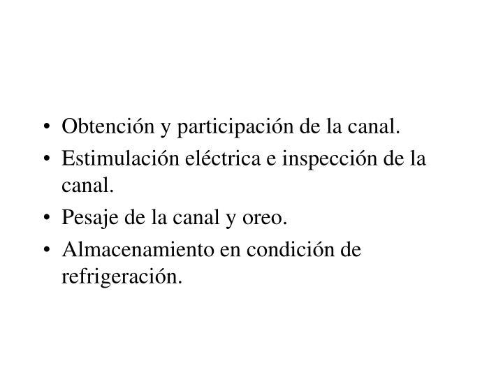 Obtención y participación de la canal.