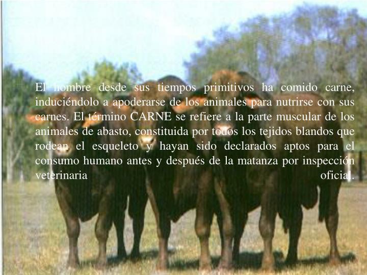 El hombre desde sus tiempos primitivos ha comido carne, induciéndolo a apoderarse de los animales p...