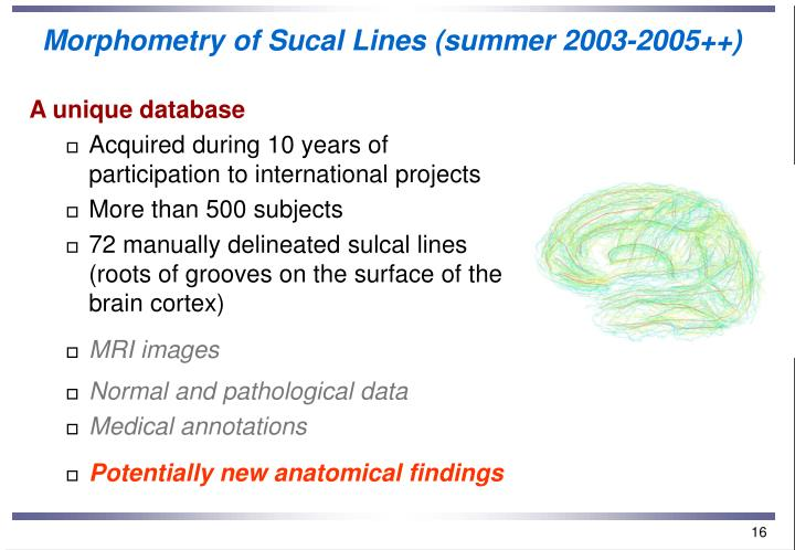 Morphometry of Sucal Lines