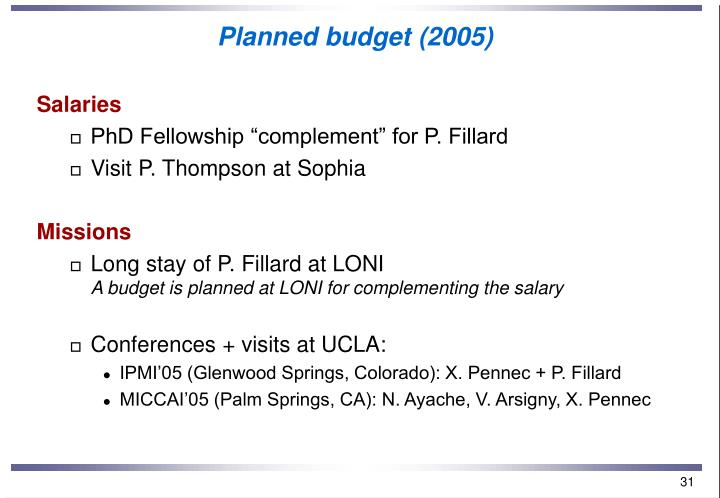 Planned budget (2005)