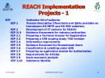 reach implementation projects 1