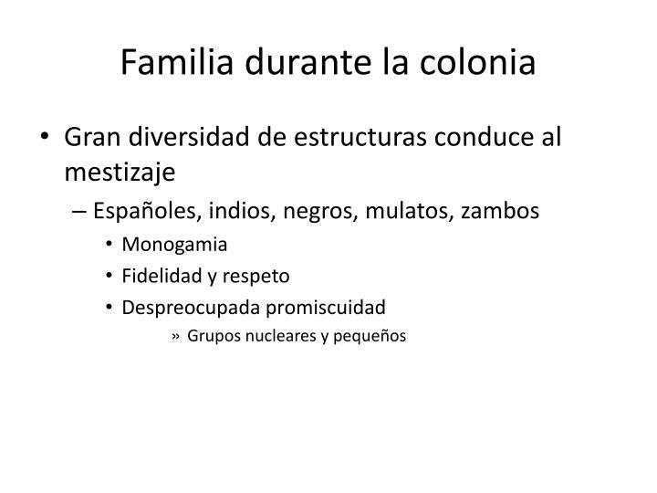 Familia durante la colonia