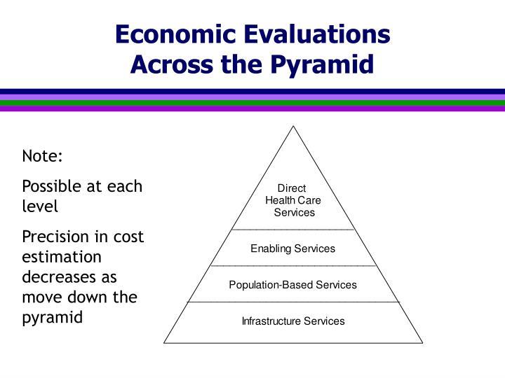 Economic Evaluations