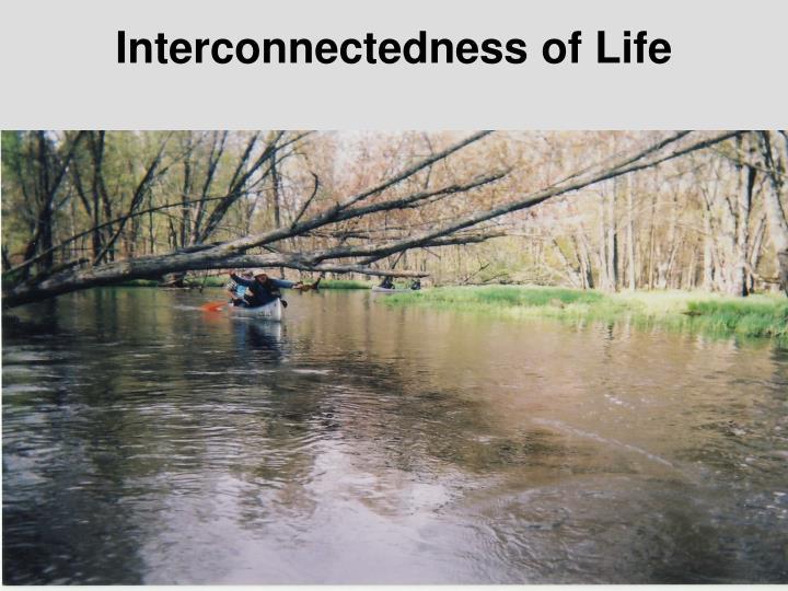 Interconnectedness of Life
