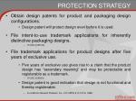protection strategy