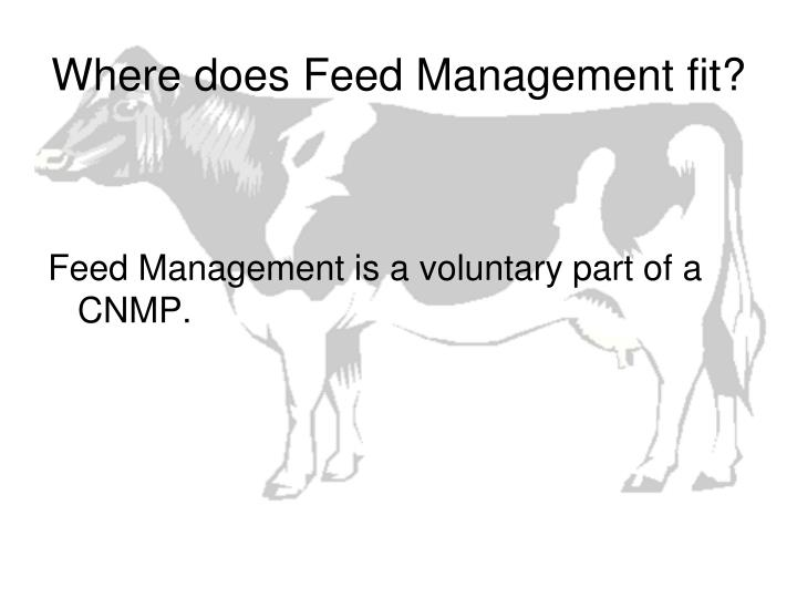 Where does Feed Management fit?