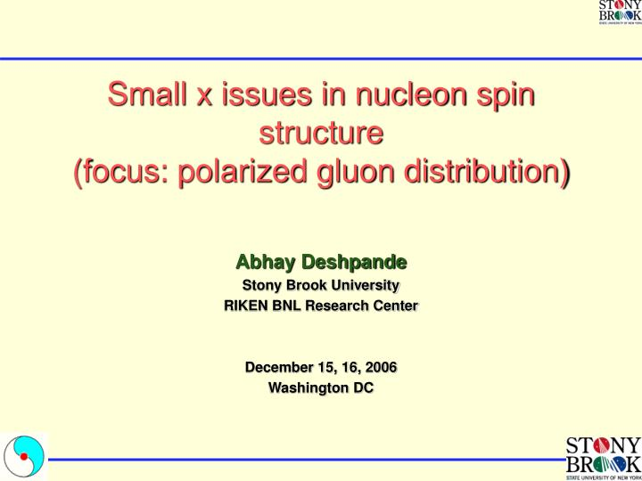 Small x issues in nucleon spin structure focus polarized gluon distribution