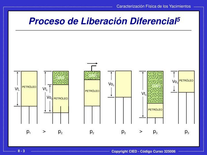 Proceso de liberaci n diferencial 5