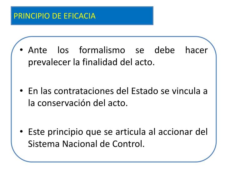 PRINCIPIO DE EFICACIA