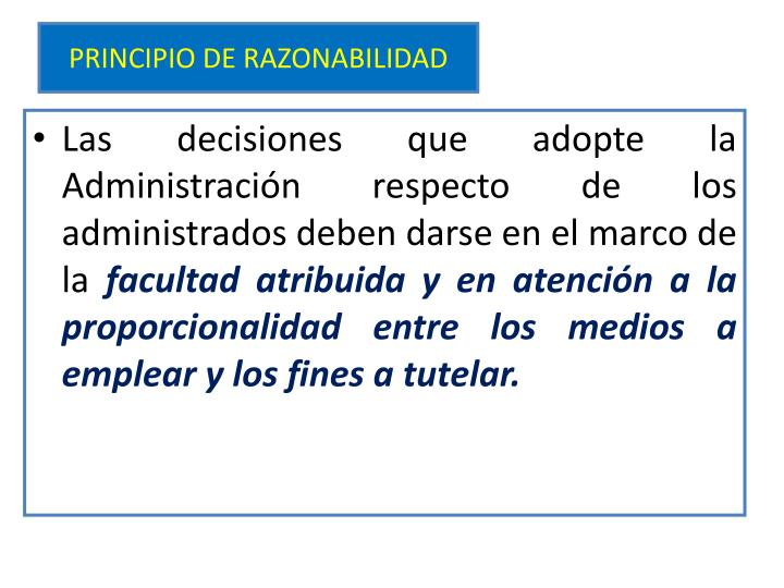 PRINCIPIO DE RAZONABILIDAD