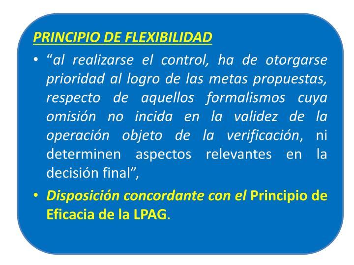 PRINCIPIO DE FLEXIBILIDAD
