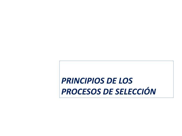 PRINCIPIOS DE LOS PROCESOS DE SELECCIÓN