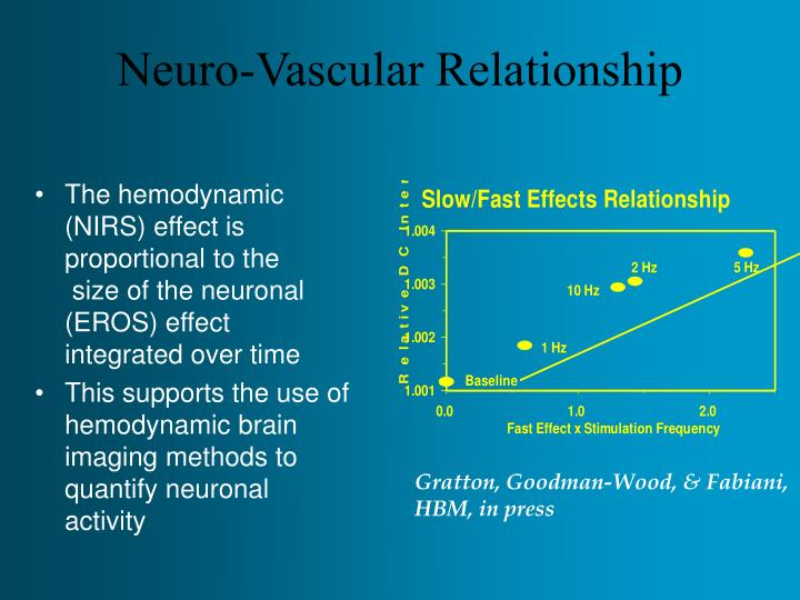 Neuro-Vascular Relationship