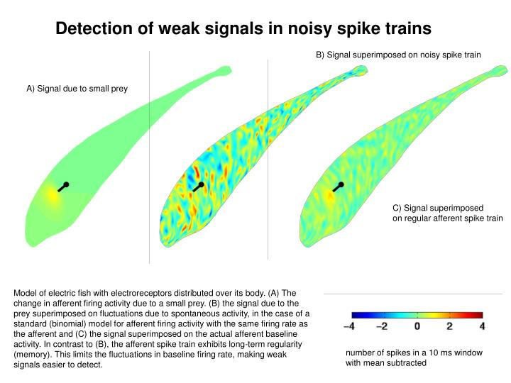 Detection of weak signals in noisy spike trains