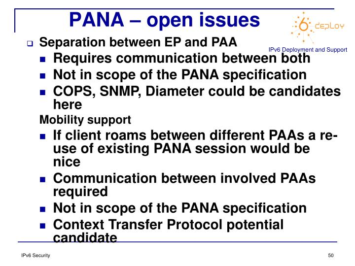 PANA – open issues