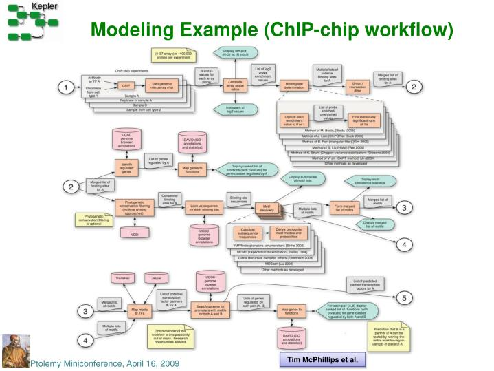 Modeling Example (ChIP-chip workflow)