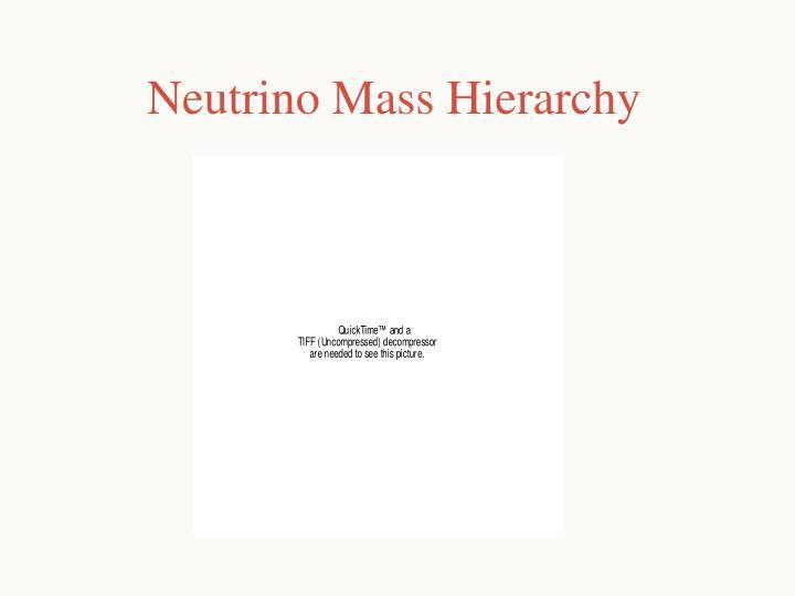 Neutrino Mass Hierarchy