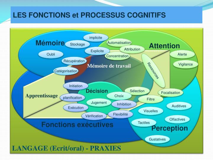 LES FONCTIONS et PROCESSUS COGNITIFS