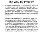the why try program