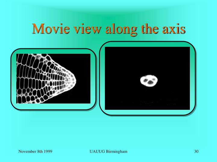 Movie view along the axis