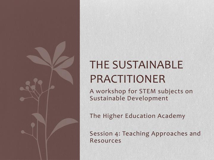 the sustainable practitioner n.