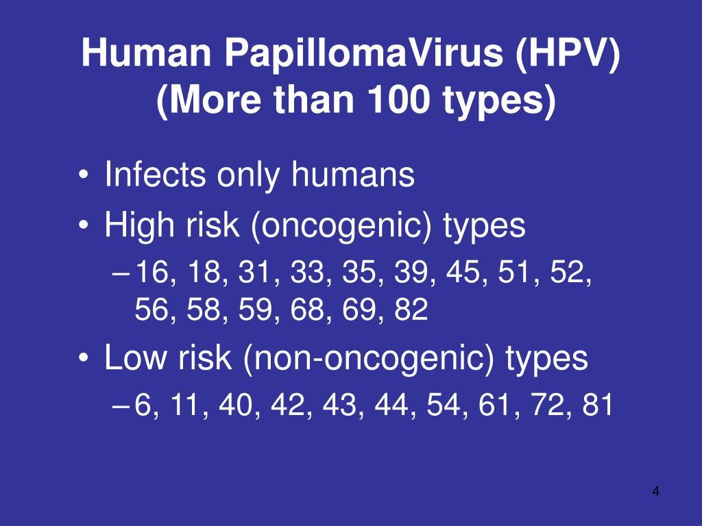 papilloma virus genotipo 45 cancer colon t4