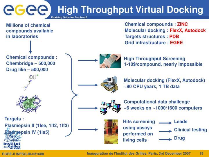 High Throughput Virtual Docking