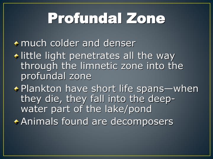 Profundal Zone