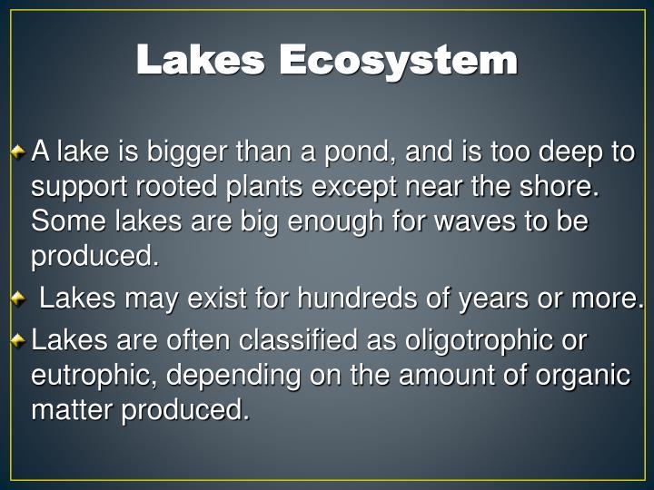Lakes Ecosystem
