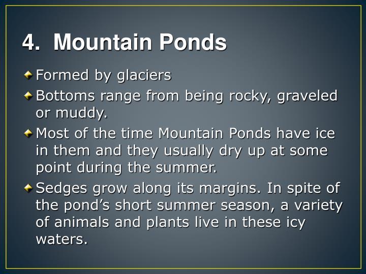 4.  Mountain Ponds