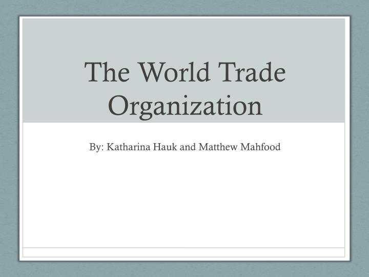 the world trade organization n.