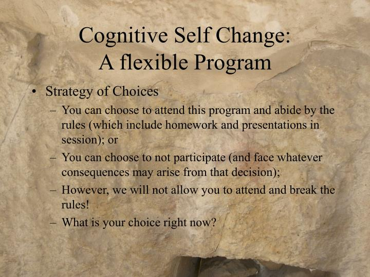 Cognitive Self Change: