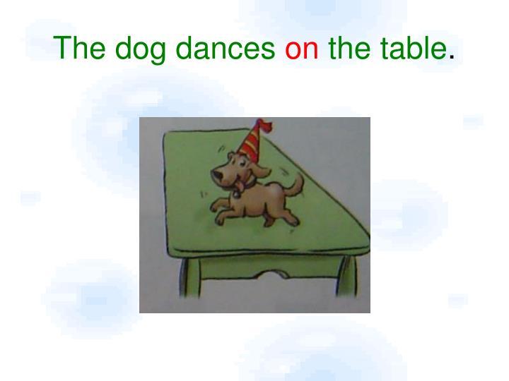 The dog dances
