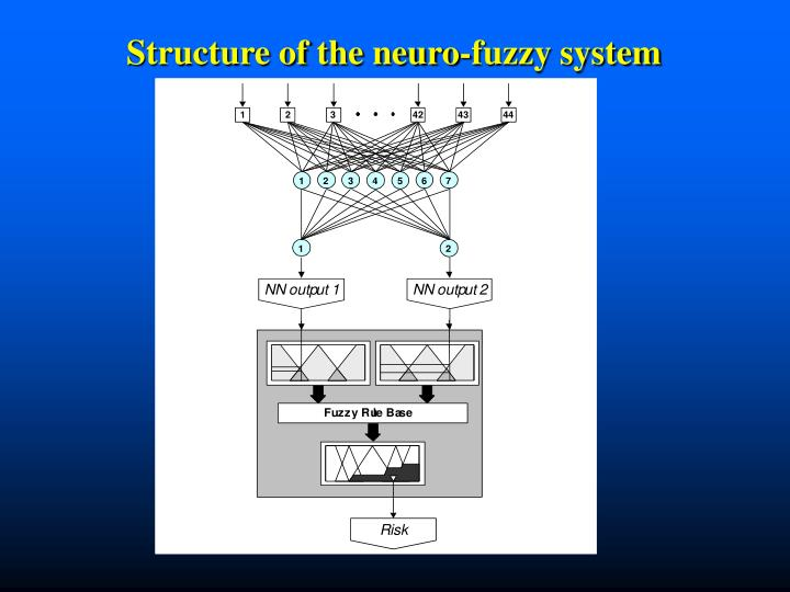 Structure of the neuro-fuzzy system