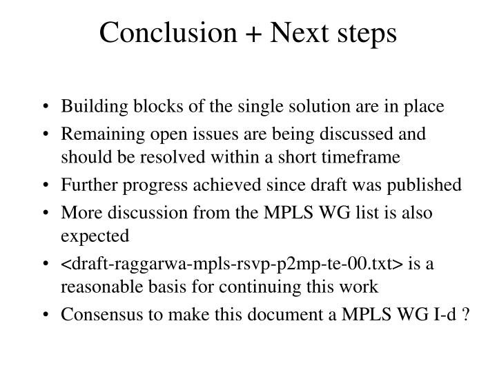 Conclusion + Next steps