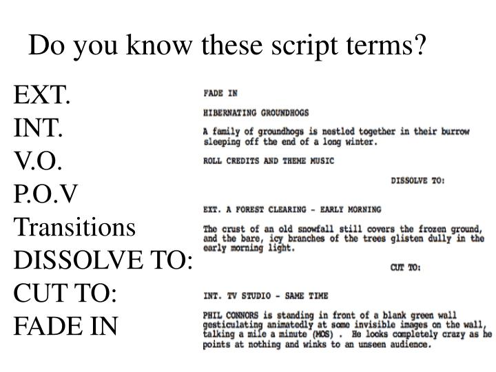 Do you know these script terms?