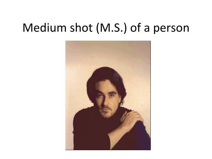 Medium shot (M.S.) of a person