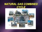 natural gas combined cycle