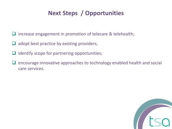 Next Steps  / Opportunities