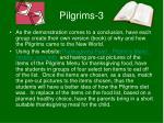 pilgrims 3