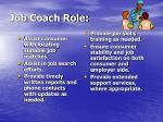 job coach role