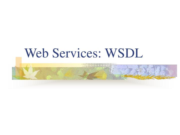web services wsdl n.